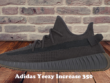 Adidas Yeezy Increase 350